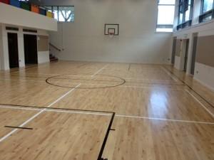 limerick school sports line marking2