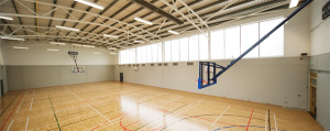 Ceiling mounted basketball