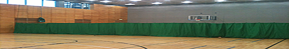 sports hall divisonal net - Rathmines, Dublin.